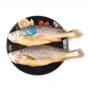 三都港三去黄花鱼700g(2条装) 去鳞去鳃去内脏,只有一根主刺,方便食用,从此爱上吃鱼